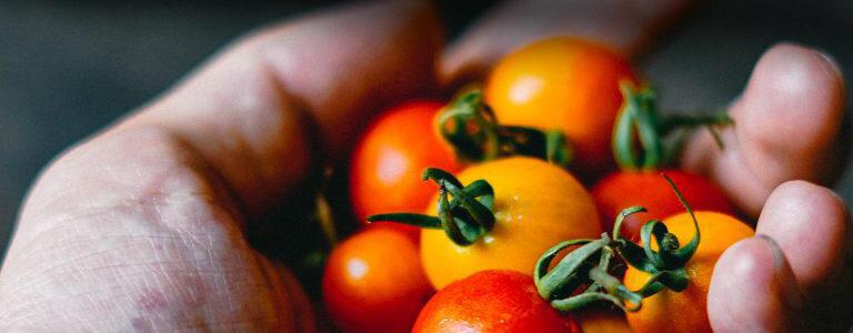 Mojotown Client - Mezzetta Foods Michael Aron - 415-717-6996